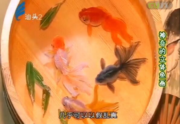 神奇的立体鱼画 2017-10-21