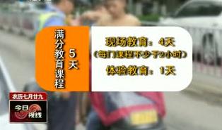 交通违法记满分 5天教育少不了 2017-09-19