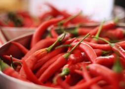为啥那么多人喜欢食用辣椒?