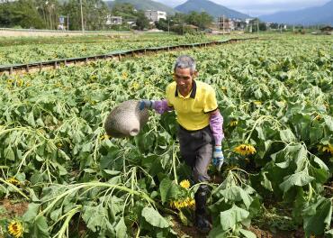广西:受灾人口达100万 灾后修复稳步开展