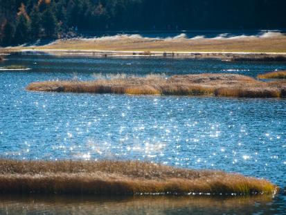 我国国家公园建设迈出实质性步伐