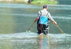 2018年查处案件1.1万余件 农业农村部重拳整治电鱼活动