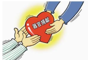 """世界首例!两患者互换半个""""病肝""""实现无捐献的器官移植"""