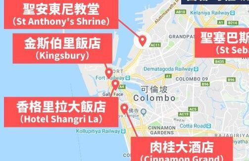 斯里兰卡公布9名连环爆炸案嫌疑人身份