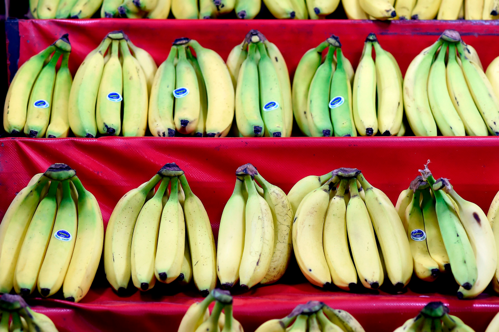 农业农村部:5月香蕉、西瓜等六种水果涨价近两成