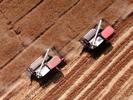 不寻常的耕耘,不一般的收获——我国夏粮主产区夏收观察